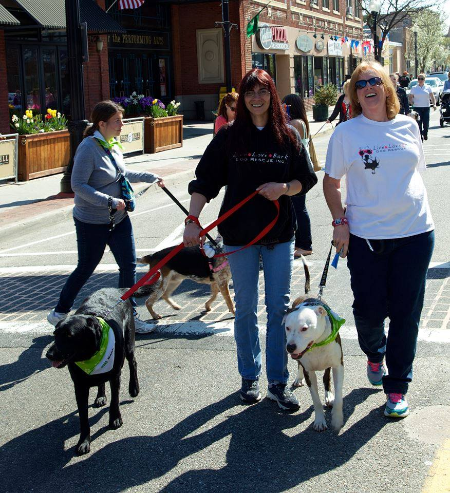 Andrea and Sue, and Jake and Jett at the SCCADV Pet Parade